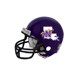 northwesternhelmet
